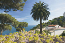 Ravello: Garden View from the Villa Rufolo von Danita Delimont