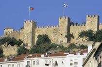 Castelo de Sao Jorge by Danita Delimont