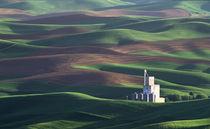 The Steptoe grain elevator from Steptoe Butte by Danita Delimont