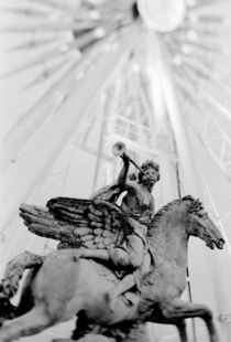 Jardin des Tuileries by Danita Delimont