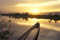 Burma (Myanmar) Sunken fishing boat reflecting the sunset on Inle Lake by Danita Delimont