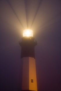 Tybee Island Lighthouse at dawn by Danita Delimont