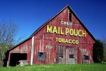 Mail Pouch Barn Mural von Danita Delimont