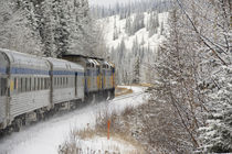 VIA Rail Snow Train between Edmonton & Jasper von Danita Delimont