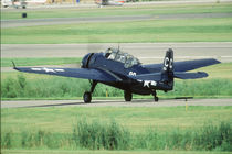 Grumman TBF/TBM Avenger Navy Carrier torpedo bomber at Fleming Field by Danita Delimont