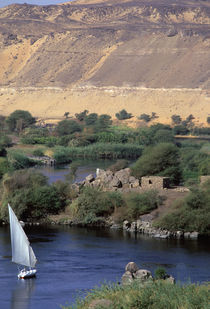 Nile River at Aswan by Danita Delimont