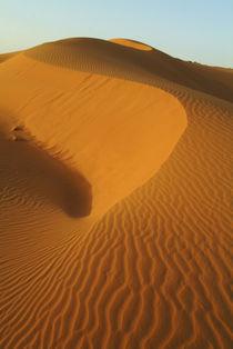 Dunes in the desert von Danita Delimont