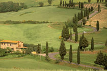 Curvy Tuscan road by Danita Delimont