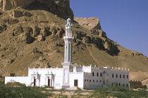 White mosque von Danita Delimont