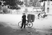 Bicyle Delivery Woman (NR) von Danita Delimont