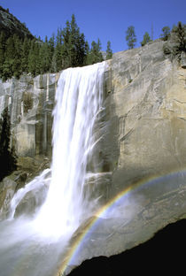 Vernal Falls and rainbow by Danita Delimont