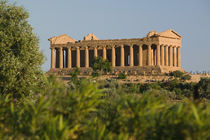 The Temple of Concordia (430 BC) von Danita Delimont