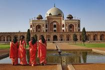 India von Danita Delimont