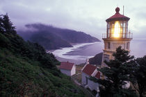 A foggy day on the Oregon coast at the Heceta Head Lighthouse by Danita Delimont