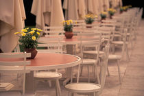 Cafe tables in Chateau Park by Danita Delimont