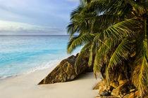 Ansi Victorin Beach by Danita Delimont