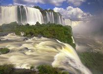 Glorious Igwacu Falls thunders into the Igwacu River von Danita Delimont