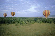 Tourists ride hot-air balloons at dawn by Danita Delimont
