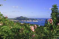 Charlotte Amalie by Danita Delimont