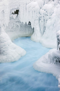 The glacial silt of the Athabasca River flows from under a frozen Athabasca Falls von Danita Delimont
