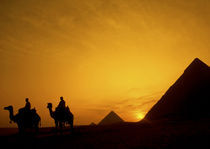 Egypt at sunset by Danita Delimont