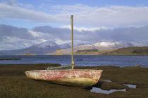 Scotland (RF) von Danita Delimont