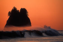 Sea stack and mist over waves at sunset on Second Beach by Danita Delimont
