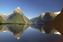Fiordland by Danita Delimont