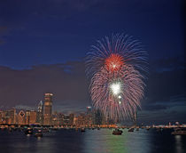 Fourth of July fireworks over Monroe Harbor by Danita Delimont