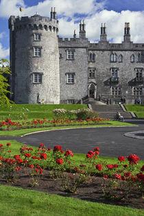 View of Kilkenny Castle by Danita Delimont