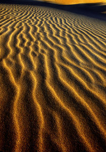 Dune pattern abstract von Danita Delimont