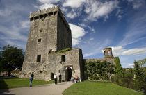 Ireland von Danita Delimont