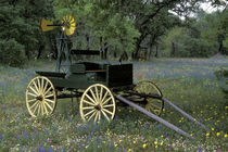 Old wagon and wildflowers von Danita Delimont