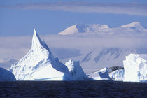 Afternoon sun lights icebergs grounded near Port Charcot southwest of Lemaire Channel by Danita Delimont