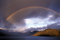 Greenland Stunning rainbow over mountains and sea by Danita Delimont