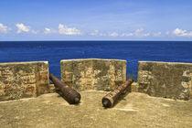 Fort Beekenburg Caracas Bay by Danita Delimont