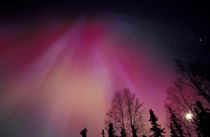 Red and green Northern Lights above central Alaska von Danita Delimont