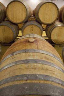 Typical oak wine barrels in cellar by Danita Delimont