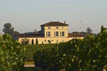 A Moueix property with 90% Merlot von Danita Delimont