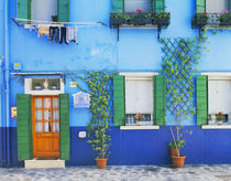 A colorful house in Burano near Venice by Danita Delimont