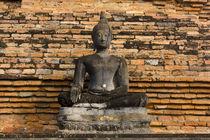 Buddha at Wat Mahathat by Danita Delimont