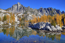 With golden larch trees von Danita Delimont