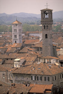 Town panorama from tower; Casa dei Guinigi; Lucca rooftops by Danita Delimont