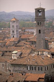 Town panorama from tower; Casa dei Guinigi; Lucca rooftops von Danita Delimont