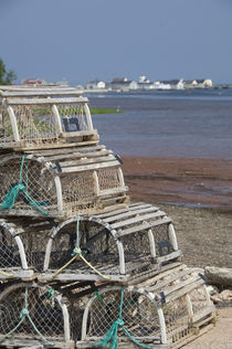 Lobster traps by Danita Delimont