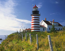 West Quoddy Head Lighthouse on the easternmost point of the United States mainland by Danita Delimont