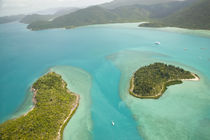 Aerial View above the Whitsunday Islands by Danita Delimont