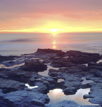 Sunset Cliffs tide pools on the Pacific Ocean reflecting the sunset by Danita Delimont