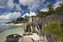 Anse Source D'Argent beach by Danita Delimont
