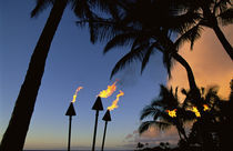 Tiki Torches Hawaii von Danita Delimont
